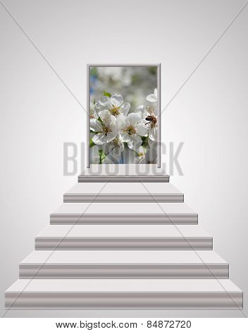 Stairs Leading From Light Room To Blossoming Cherry-tree