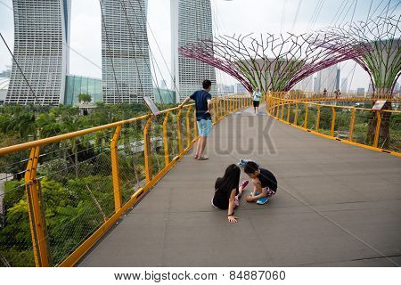 SINGAPORE - JANUARY 27, 2015: Tourists on a suspended track on The Supertree Grove at Gardens by the Bay. Gardens by the Bay park is very popular holiday destination with tourists and locals alike.
