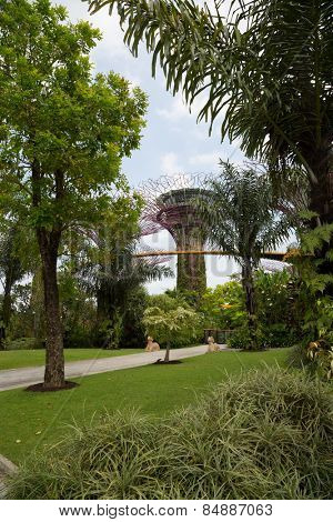 SINGAPORE - JANUARY 27, 2015: Gardens by the Bay was crowned World Building of the Year at the World Architecture Festival 2012. Park is very popular holiday destination with tourists and locals alike