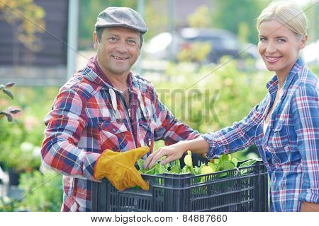 Portrait of gardeners with box of seedling