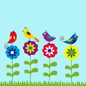 pic of grass bird  - Cute and colorful birds in spring and summer time - JPG