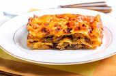 picture of lasagna  - Mushroom lasagna piece on plate selective focus - JPG