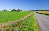 picture of farrow  - Midwest American farmland with long road and fields - JPG