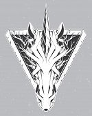 pic of unicorn  - Unicorn head - JPG