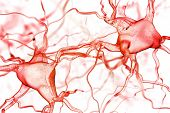 stock photo of nerve cell  - Nerves abstract background - JPG
