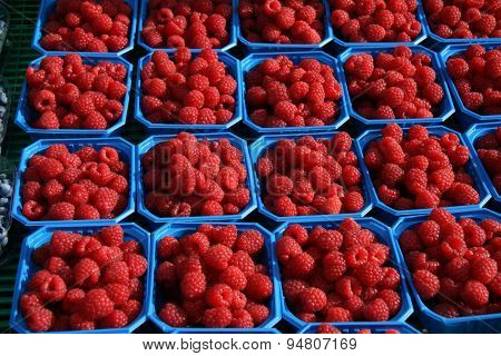 Raspberry on the market