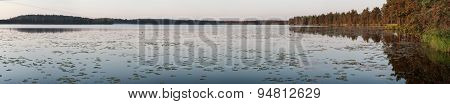 Sunrise panoramic view of coniferous forest big lake