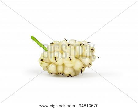 One Berry White Mulberry Isolated On White Background