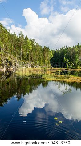 White Summer Clouds Reflecting On The Forest Pond Portrait