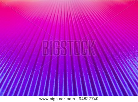 Prospect In Purple Pink
