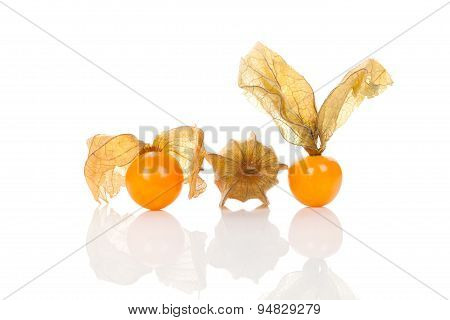Physalis Isolated On White Background.