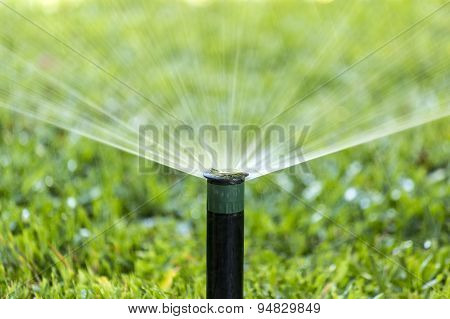 Garden Irrigation System Spray Watering Lawn.
