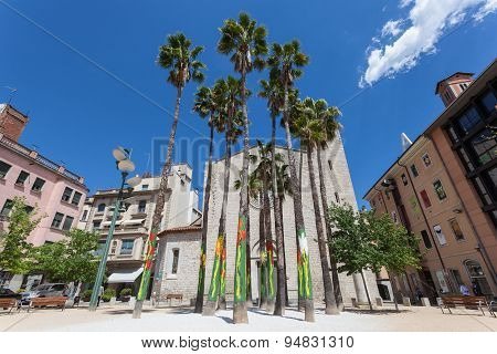Palm Trees In Girona, Spain