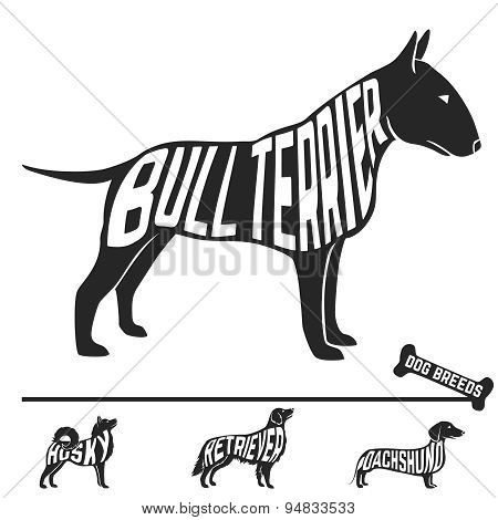 Set of dog breeds silhouettes with text inside. Bull terrier