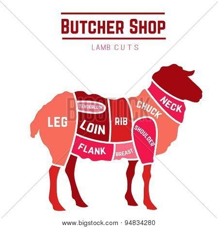 Lamb or mutton cuts diagram. Butcher shop