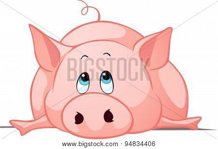 Big Fat Pig Lay Down - Vector Illustration