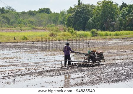 Thai farmer on pushcart in paddy field