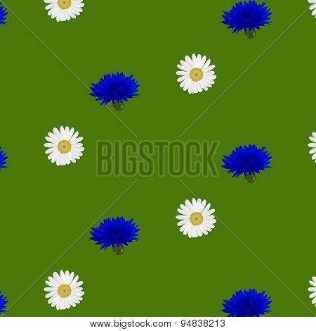 Seamless pattern with flowers chamomile, cornflowers
