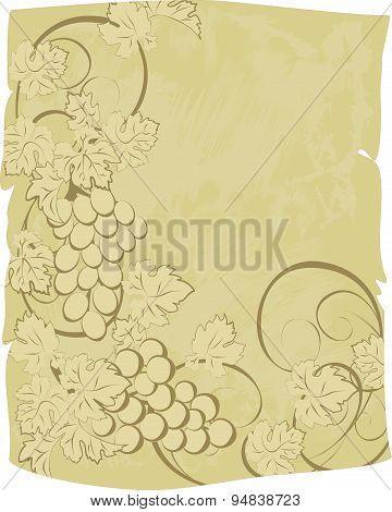 Vector scroll with grunge texture and vines.