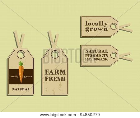 Stylish Farm Fresh sticker and label, template or brochure design with carrot. Mock up design with s