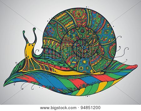 Vector Illustration Of The Ornamental Snail With A Lot Of Details