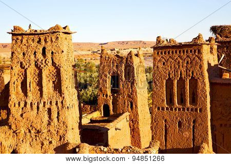 Africa In Morocco The Old