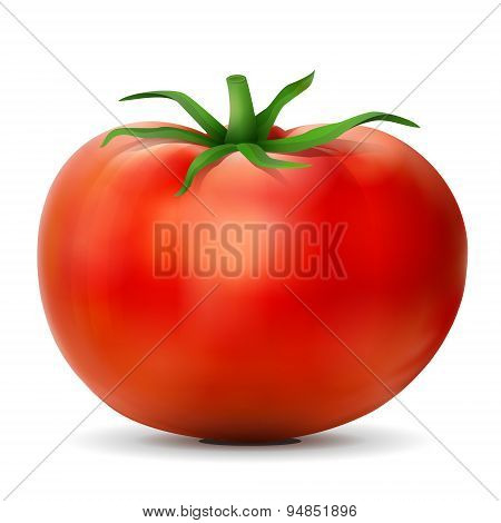 Tomato With Leaves Close Up
