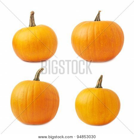 Orange pumpkin isolated