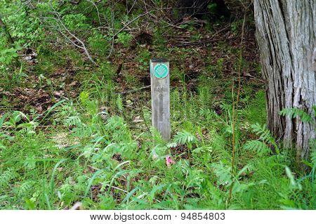 Preserve Boundary Marker