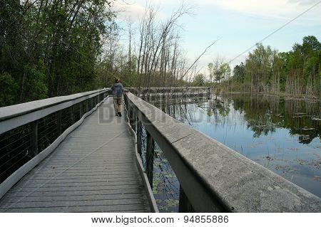 Boardwalk in Spring Lake Park