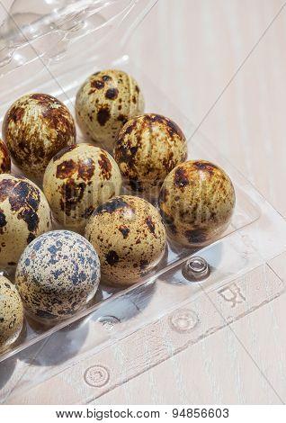 Eggs Of Quail In The Open Plastic Box
