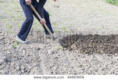 The Process Of Digging