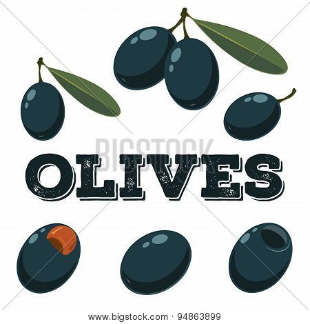 Black Olives Set.hand Drawn Olives.