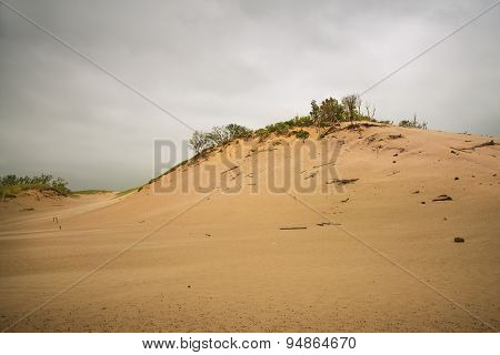 Sand Hills At Warren Dunes Park