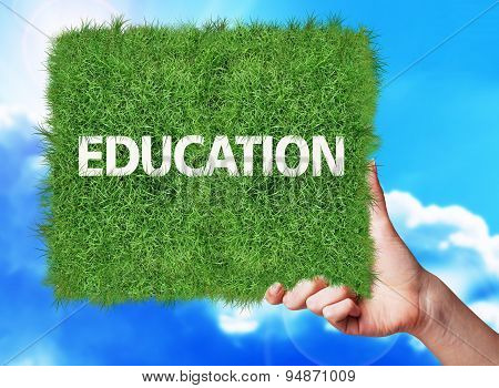Banner Of Grass With Text Education.
