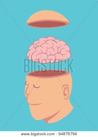 Head And Brain Of Human