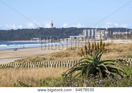 View Of Bluff From Addington Beach, Durban South Africa