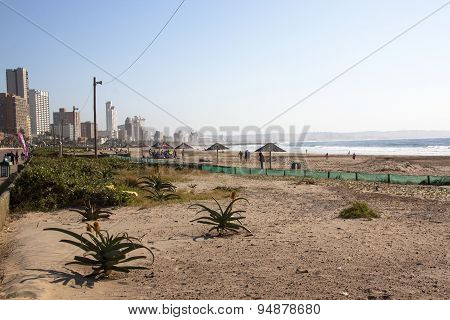 People And Flora On Addington Beach Against City Skyline