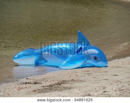 An inflatable toy dolphin