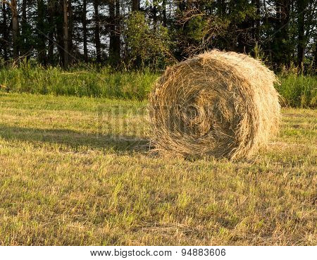 Single Rolled Hay Bale In Sunset Light