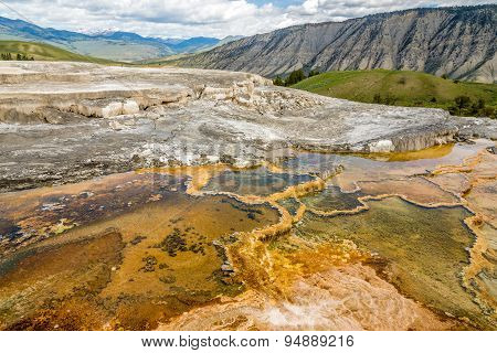 Minerva Terrace In Yellowstone N.p.