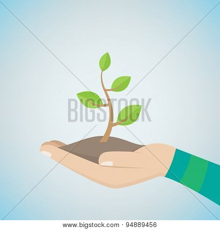 Money Tree On Hand
