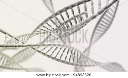 Many Dna Chains On The Light Background