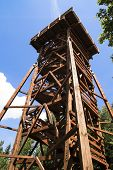 picture of observed  - Lookout tower designed for the observation of animals - JPG