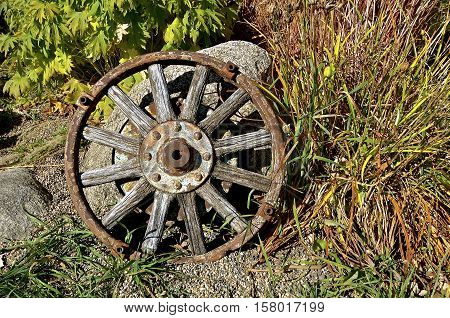 An old wooden wagon wheel with a forged steel rim is propped against some rocks in a garden