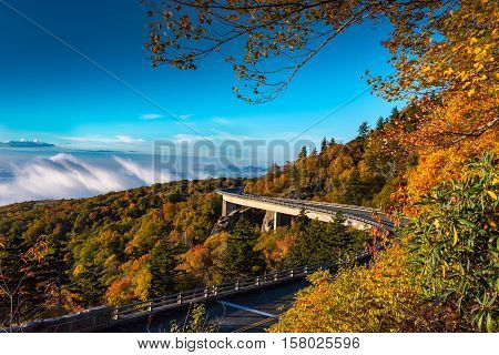 Morning Fog In The Valley Below Linn Cove Viaduct