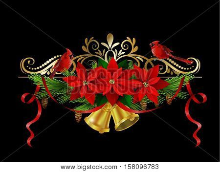 Christmas decoration with evergreen treess holly and pinecone and poinsettia and ribbon isolated bells red birds Cardinal