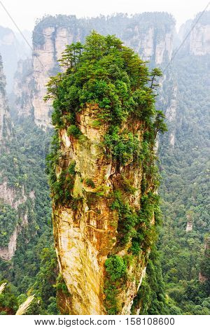 The Avatar Hallelujah Mountain Among Green Woods And Rocks