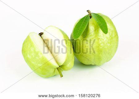 Fresh green Guava fruit on white background
