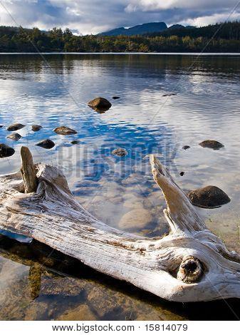 Lake St Clair National Park